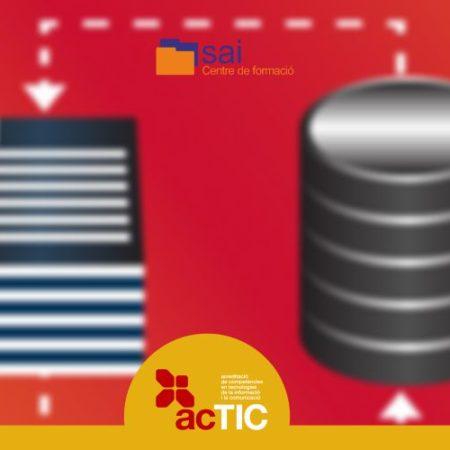 Curs acTIC avançat C7 – Tractament de les dades