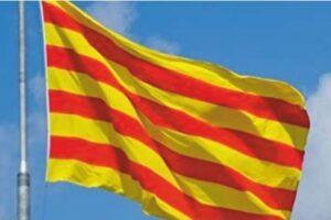 Curs de preparaciò de Català C1