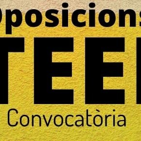 Preparació Oposicions TEEI